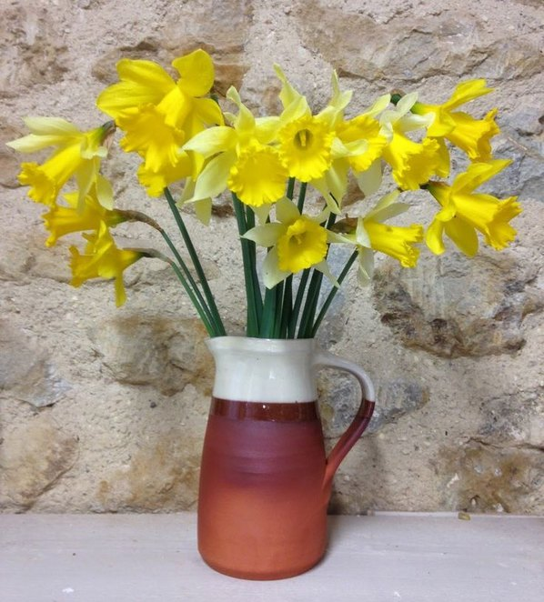 Paul Jessop Jug with Daffs